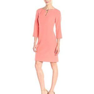 NWT Adrianna Papell Crepe Shift Dress 3/4 Sleeves